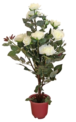 Picture of Rose Tree (Cream/Red)